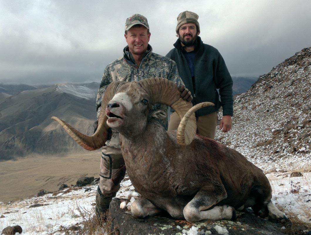 High Altai Argali Shikar Safaris