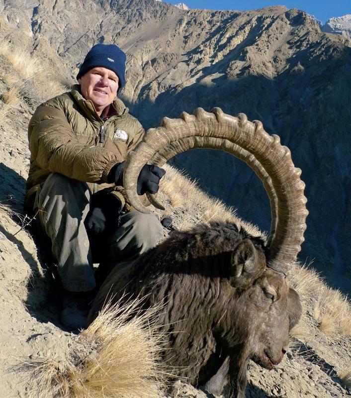 Himalayan ibex - photo#4